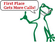 KiiWii the cartoon chameleon says: 1st Place Makes Money